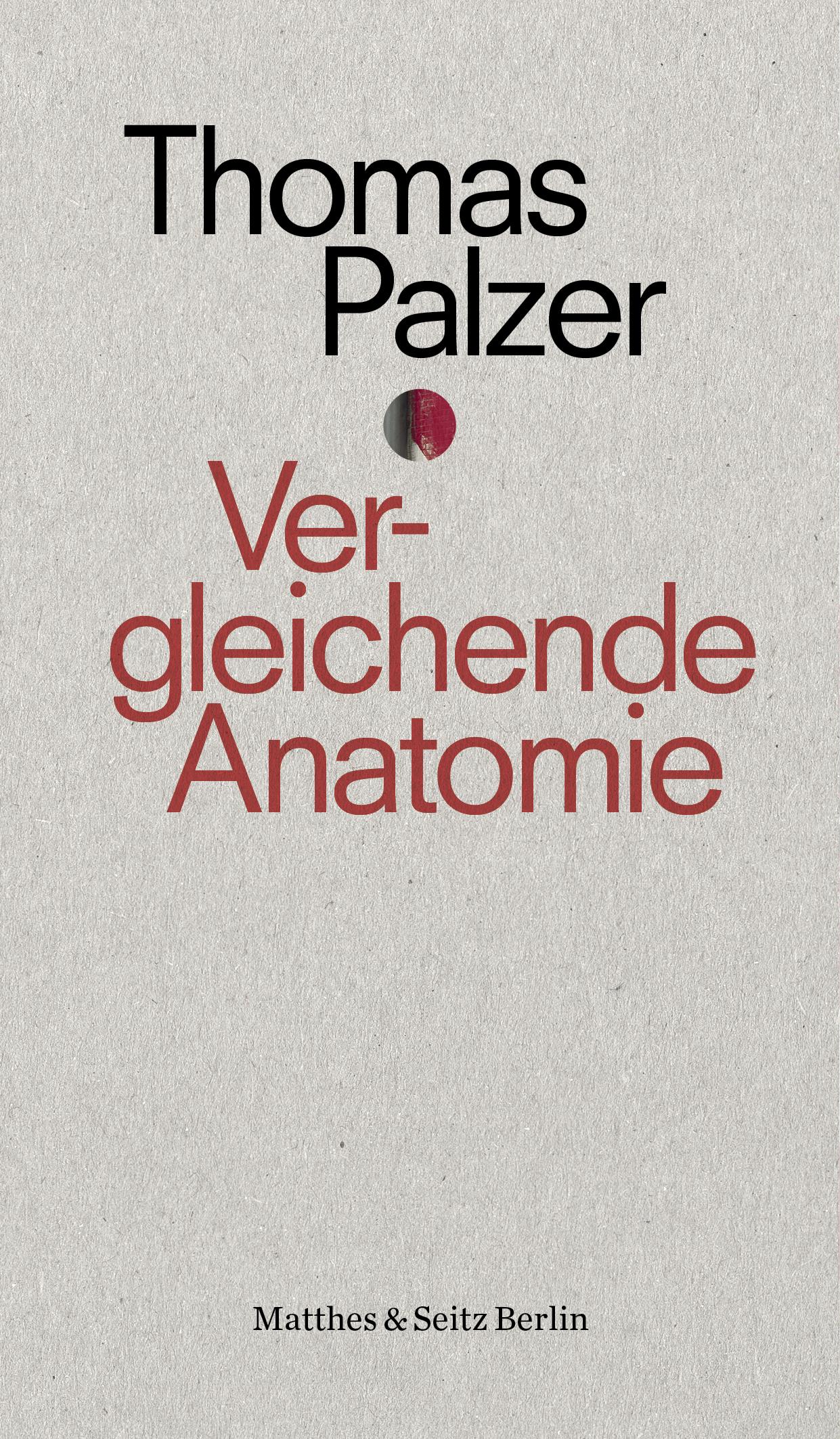 Ungewöhnlich Die Anatomie Der Liebe Fotos - Menschliche Anatomie ...